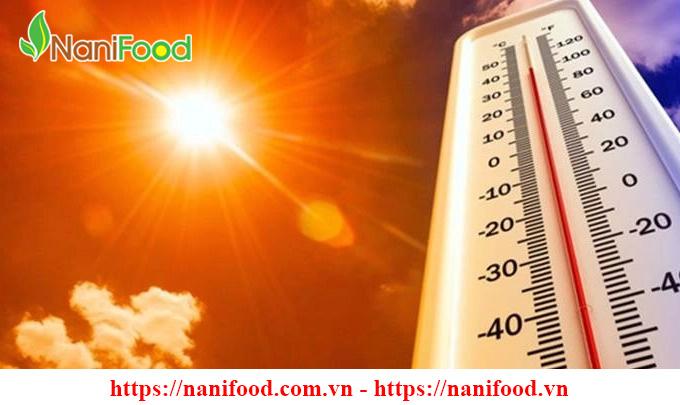 Những ảnh hưởng của thời tiết nắng nóng ngày hè đến sức khỏe